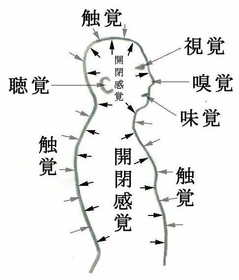 02 | 開閉感覚起動法入門